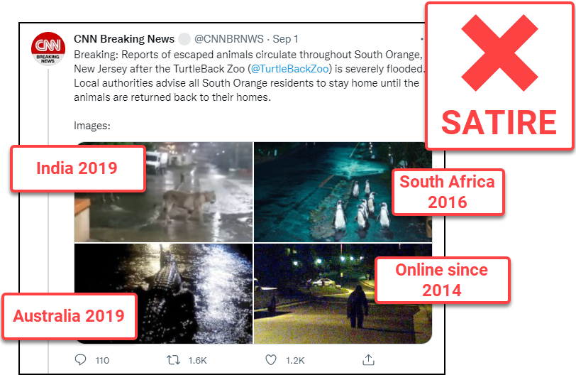 """A tweet from a satirical Twitter account bearing the name """"CNN Breaking News"""" that says, """"Breaking: Reports of escaped animals circulate throughout South Orange, New Jersey after the Turtle Back Zoo (@TurtleBackZoo) is severely flooded. Local authorities advise all South Orange residents to stay home until the animals are returned back to their homes."""" It includes four images of wild animals in city streets with labels added that reveal their actual contexts."""